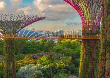 Η Καλύτερη Χώρα Για Να Περάσει Κανείς Την Πανδημία Είναι Η Σιγκαπούρη