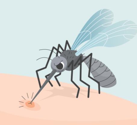 Η Καταπολέμηση Κουνουπιών Στη Δ.ε. Ανατολικου Ολυμπου