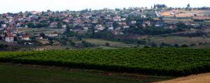 Στο Δίκτυο «Αυθεντικών Χωριών Αδριατικής Ιονίου»