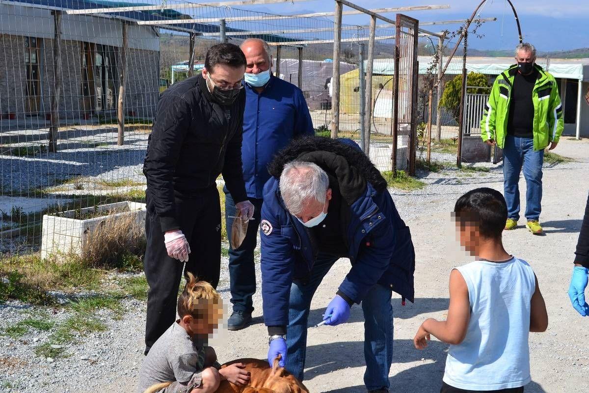 Προληπτικοί Εμβολιασμοί Και Χορήγηση Φαρμάκων Σε Αδέσποτα, Στον Οικισμό Των Ρομά