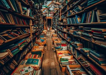 Βιβλία Σε Νέους Από Τον Οαεδ