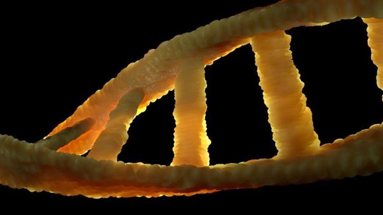 Ένζυμο Των Ανθρώπινων Κυττάρων Δείχνει Να Καταρρίπτει Το Κεντρικό Δόγμα Της Βιολογίας