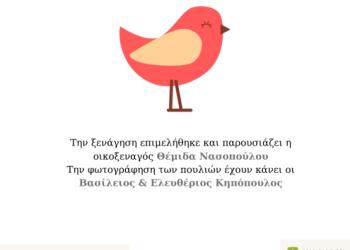 Οικοξενάγηση «Τα Πουλιά του Πλατανόδασους Νεοκαισάρειας»