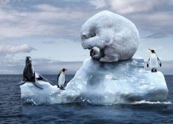 Κλιματική αλλαγή: Τα «ζωτικά σημεία» της Γης εξασθενούν