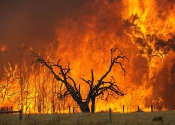 Οι Πυρκαγιές Επηρέασαν Το Κλίμα
