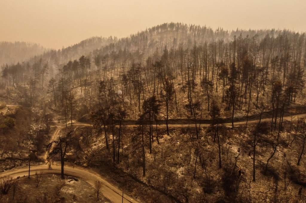 Έκθεση ΟΗΕ: Οι άνθρωποι φταίμε για την κλιματική αλλαγή