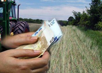 Αποζημιώσεις ύψους 2 εκατ. ευρώ από τον ΕΛ.Γ.Α.