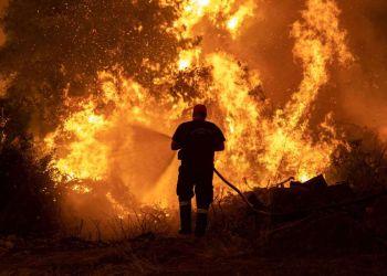 Δασικές πυρκαγιές στο ελληνικό μεσογειακό τοπίο: ευλογία και κατάρα!