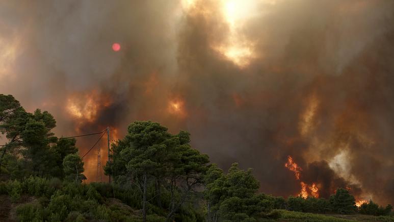 Ελλάδα: Πάνω από ένα εκατομμύριο στρέμματα κάηκαν σε δύο εβδομάδες