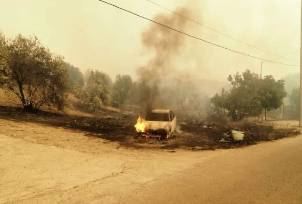 Καίγεται η χώρα – Μεγάλα μέτωπα σε Εύβοια, Αρχαία Ολυμπία και Μεσσηνία