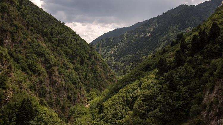 Παρατείνεται η απαγόρευση για τα δάση περιοχές Natura, εθνικούς δρυμούς, αισθητικά δάση και άλση
