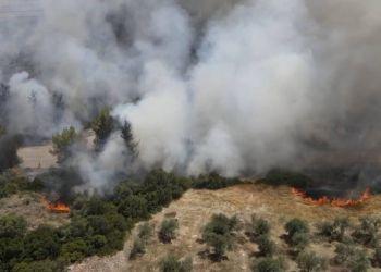 Φωτιές: Στα χέρια των Αρχών 14χρονος για τις πυρκαγιές στον Θεολόγο