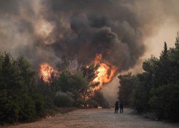 Oι Πυρκαγιές στα Δάση της Αττικής.