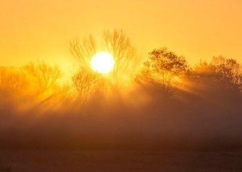 O φετινός Ιούλιος ήταν ο τρίτος θερμότερος Ιούλιος στα χρονικά, σύμφωνα με την υπηρεσία Copernicus