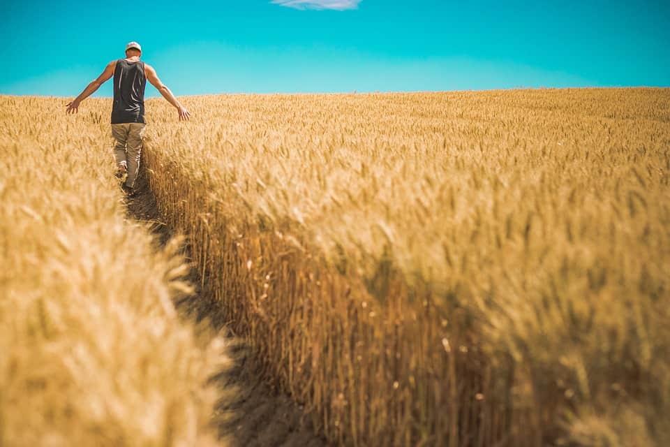 Παράταση προσωρινής απασχόλησης εργατών γης