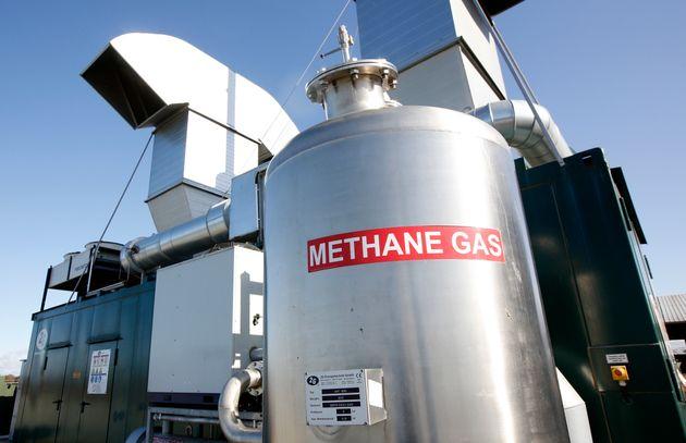 Αέρια του Θερμοκηπίου: 20 κτηνοτροφικές εταιρείες ρυπαίνουν περισσότερο από Γαλλία, Γερμανία, Βρετανία