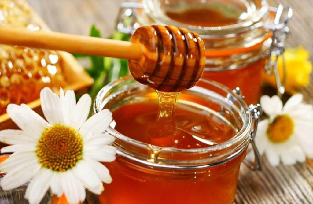 Αίτηση Καταχώρησης της ονομασίας «Μέλι Κισσούρι»