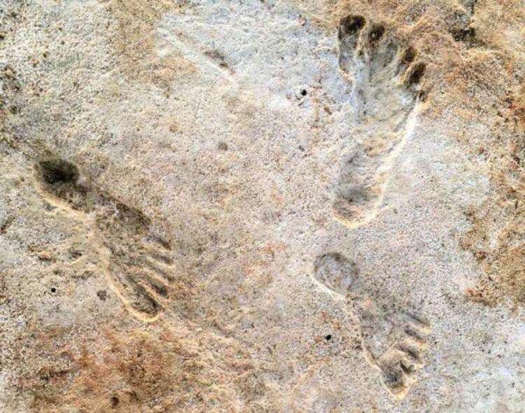 Βρέθηκαν οι αρχαιότερες πατημασιές ανθρώπων ηλικίας 23.000 ετών στην Αμερική