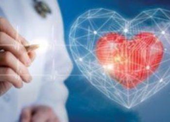 Οι καρδιές των ανθρώπων χτυπούν συγχρονισμένα