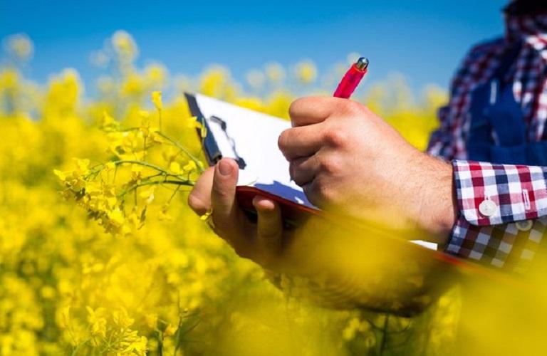 Προσωρινοί πίνακες κατάταξης των υποψηφίων για το νέο πρόγραμμα κατάρτισης ανέργων Καινοτόμες Μέθοδοι στον Αγροτικό Τομέα