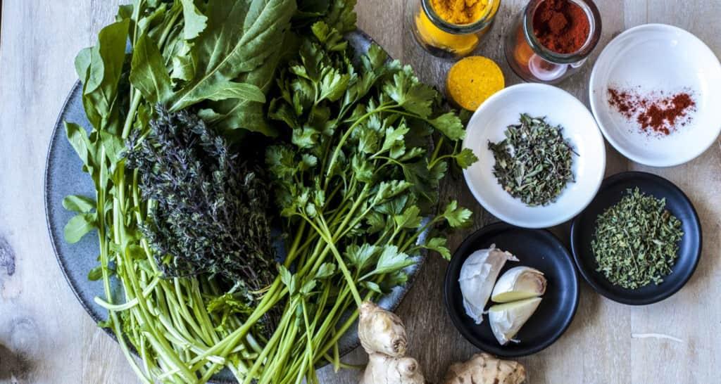 Τα περίφημα αρωματικά – φαρμακευτικά φυτά του Ολύμπου στο «μικροσκόπιο»