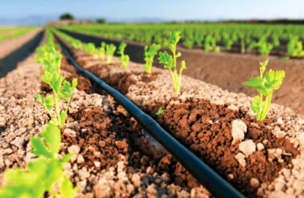Διεύθυνση Αγροτικής Οικονομίας και Κτηνιατρικής Π.Ε.: Υλοποίηση επενδύσεων που συμβάλλουν στην εξοικονόμηση ύδατος