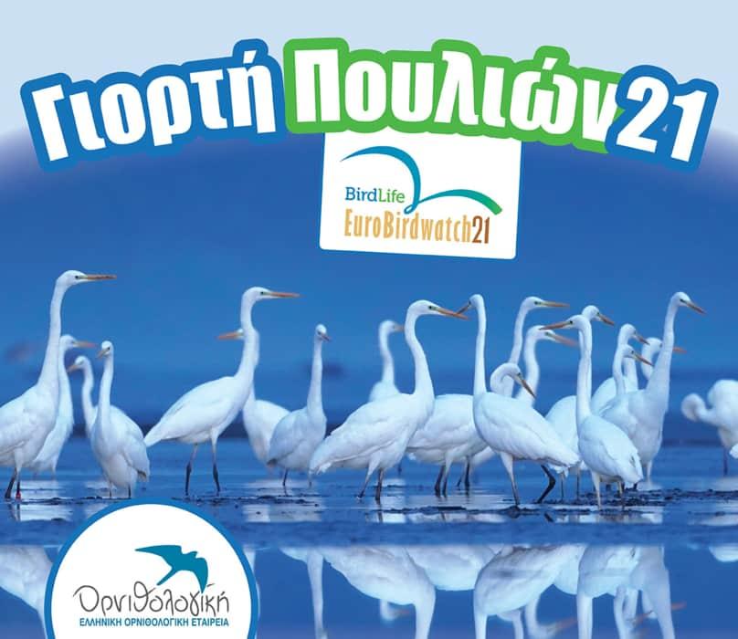 Γιορτή Πουλιών την Κυριακή με απελευθέρωση πουλιών στο Καλοχώρι