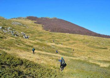 Ο Ορειβατικός Σύλλογος Βροντούς Ολύμπου καλεί τα μέλη και τους φίλους του για πεζοπορία στο Βέρμιο, την Κυριακή 31 Οκτωβρίου 2021